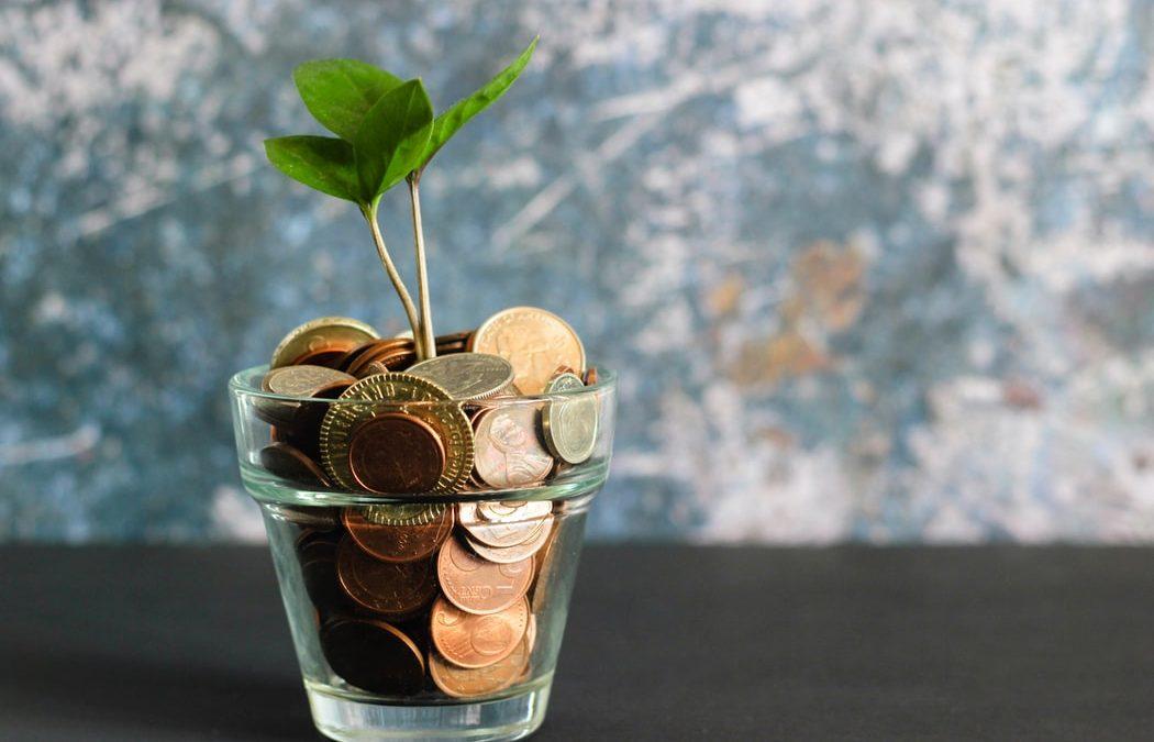 planta-vaso-cristal-monedas-dinero-verde-gris-cobre